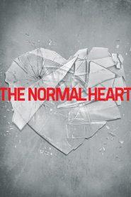 Um Coração Normal