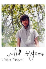 Tigres Selvagens